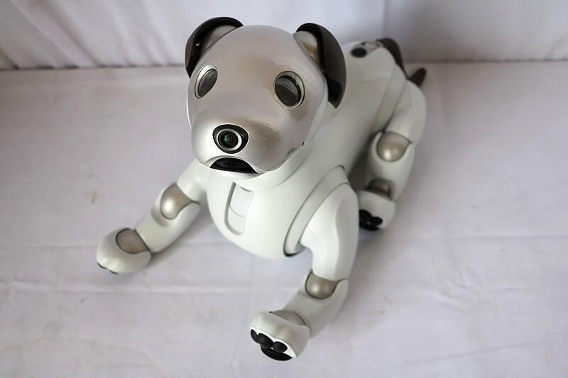 【買取実績】SONY アイボ ERS-1000 aibo専用おもちゃ付き|中古買取価格68,000円